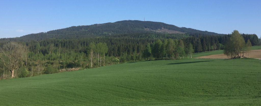 Regnskapsfører i Åsleia - Eidsvoll (utsikt)
